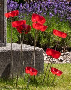 Poppies on the Memorial Plaque outside Lymington Hospital